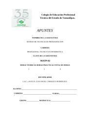 Manual_de_Manejo_de_Tecnicas_de_Programacion_ Version MTP002.docx