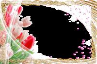 Molduras floridas.png