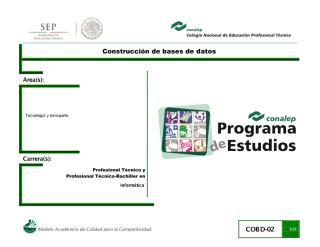 Construccionbasesdatos02.pdf