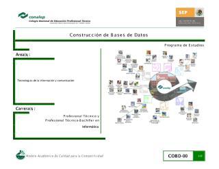 PROGRAMA CONSTRUCCION_DE_BASE_DE_DATOS.pdf