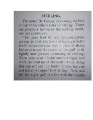 Heeling.doc